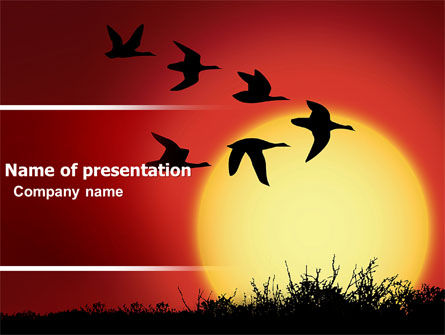 Flock PowerPoint Template, 04746, Nature & Environment — PoweredTemplate.com