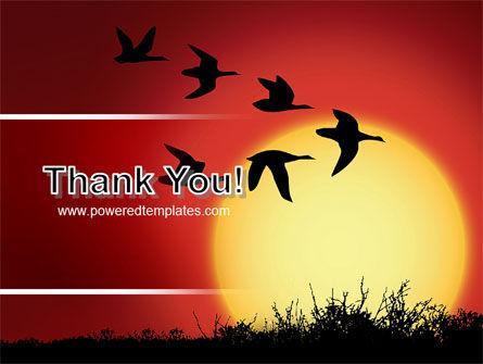 Flock PowerPoint Template Slide 20