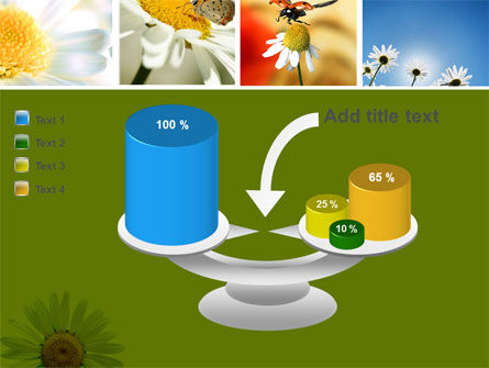 Camomile Field PowerPoint Template Slide 10