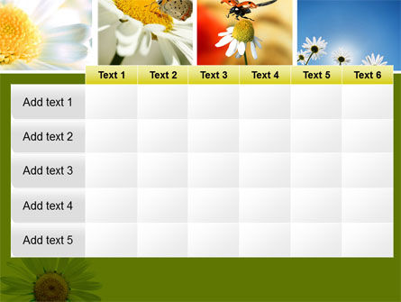 Camomile Field PowerPoint Template Slide 15