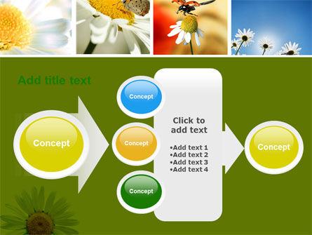 Camomile Field PowerPoint Template Slide 17