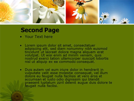 Camomile Field PowerPoint Template, Slide 2, 04752, Nature & Environment — PoweredTemplate.com