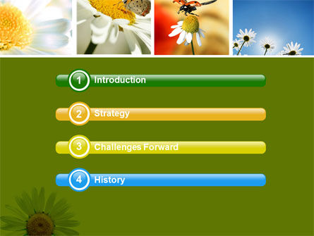 Camomile Field PowerPoint Template, Slide 3, 04752, Nature & Environment — PoweredTemplate.com