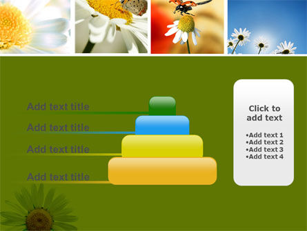 Camomile Field PowerPoint Template Slide 8