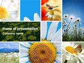 Nature & Environment: 파워포인트 템플릿 - 카밀레 필드 #04752