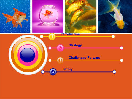 Various Goldfishes PowerPoint Template, Slide 3, 04762, Animals and Pets — PoweredTemplate.com