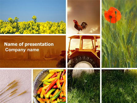 Agriculture: Summer On The Farm PowerPoint Template #04809