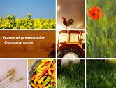 Agriculture: Templat PowerPoint Musim Panas Di Pertanian #04809