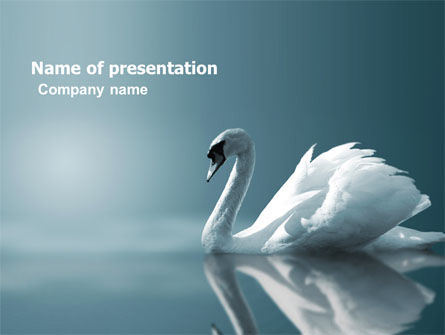 Animals and Pets: White Swan PowerPoint Template #04825