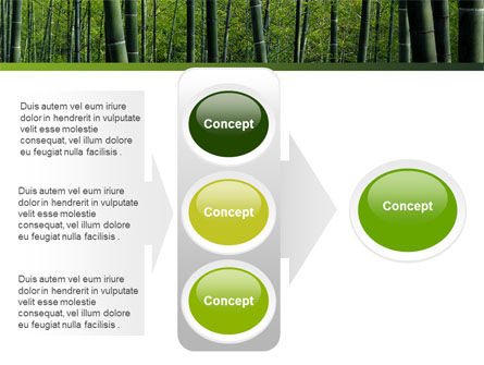 Bamboo PowerPoint Template Slide 11
