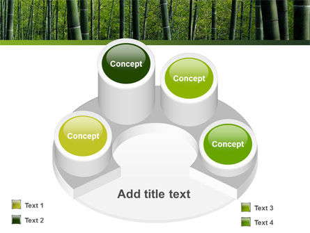 Bamboo PowerPoint Template Slide 12
