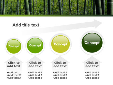 Bamboo PowerPoint Template Slide 13