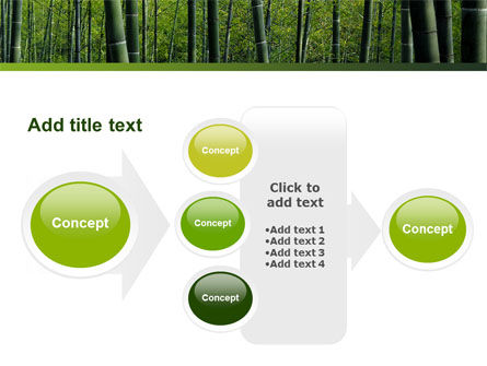 Bamboo PowerPoint Template Slide 17