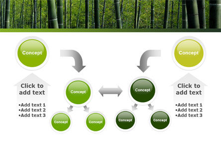 Bamboo PowerPoint Template Slide 19