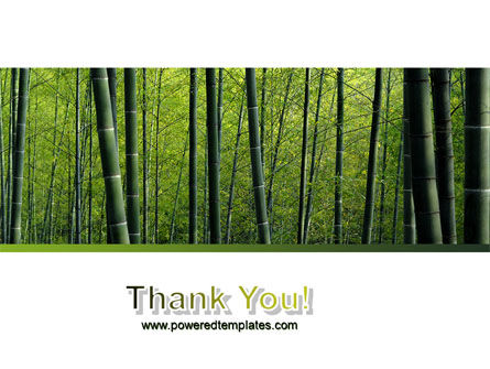 Bamboo PowerPoint Template Slide 20
