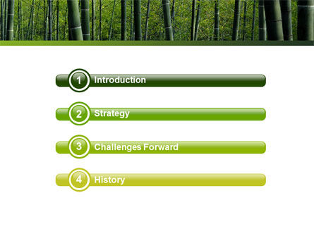 Bamboo PowerPoint Template, Slide 3, 04836, Nature & Environment — PoweredTemplate.com