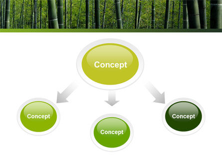 Bamboo PowerPoint Template, Slide 4, 04836, Nature & Environment — PoweredTemplate.com