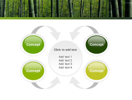 Bamboo PowerPoint Template Slide 6