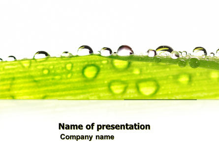 Dew PowerPoint Template, 04872, Nature & Environment — PoweredTemplate.com