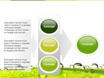 Dew PowerPoint Template Slide 11