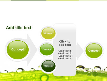 Dew PowerPoint Template Slide 17