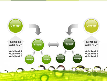 Dew PowerPoint Template Slide 19