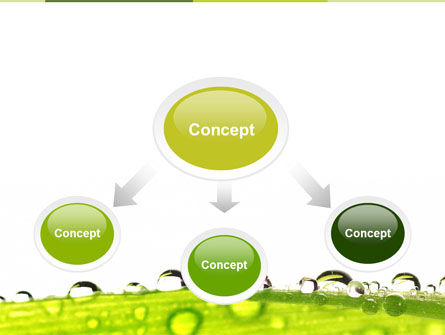 Dew PowerPoint Template Slide 4