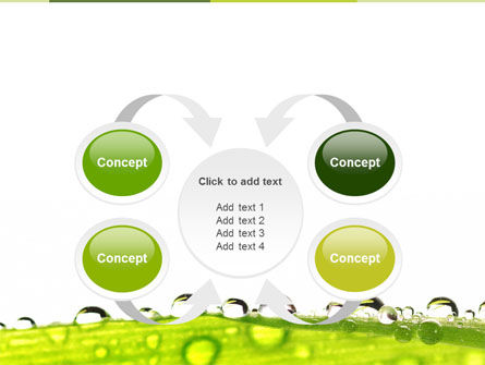 Dew PowerPoint Template Slide 6