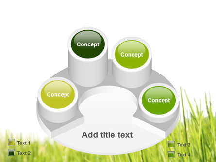 Green Grass Under Blue Sky PowerPoint Template Slide 12