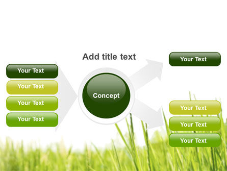 Green Grass Under Blue Sky PowerPoint Template Slide 14