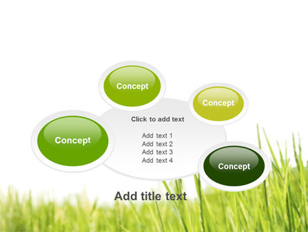 Green Grass Under Blue Sky PowerPoint Template Slide 16