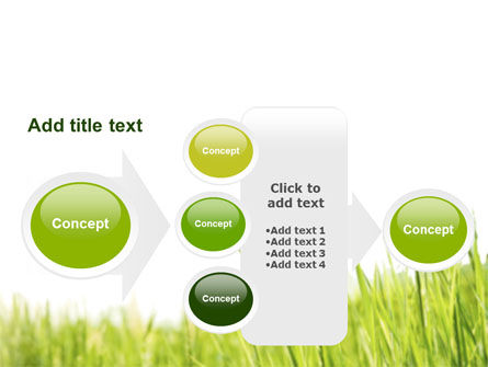 Green Grass Under Blue Sky PowerPoint Template Slide 17