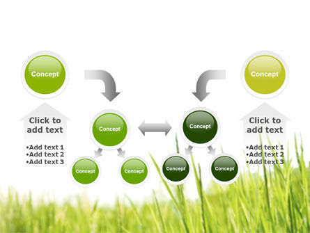 Green Grass Under Blue Sky PowerPoint Template Slide 19