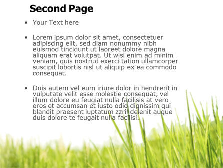 Green Grass Under Blue Sky PowerPoint Template Slide 2