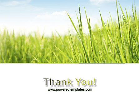 Green Grass Under Blue Sky PowerPoint Template Slide 20