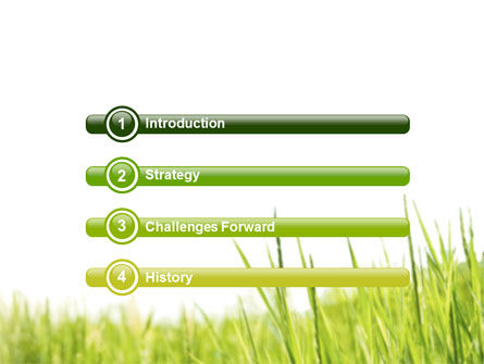 Green Grass Under Blue Sky PowerPoint Template Slide 3