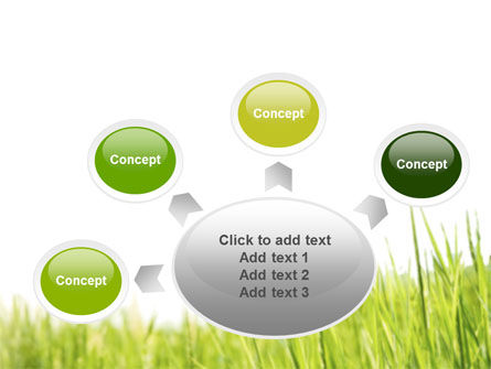 Green Grass Under Blue Sky PowerPoint Template Slide 7