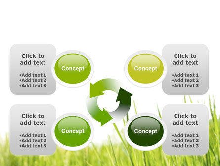 Green Grass Under Blue Sky PowerPoint Template Slide 9