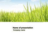 Nature & Environment: Grünes gras unter blauem himmel PowerPoint Vorlage #04885