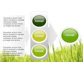 Green Grass Under Blue Sky PowerPoint Template#11