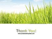Green Grass Under Blue Sky PowerPoint Template#20