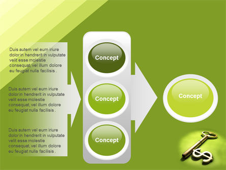 Financial Key PowerPoint Template Slide 11