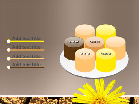 Desert Flower Free PowerPoint Template Slide 12