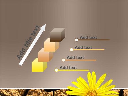 Desert Flower Free PowerPoint Template Slide 14