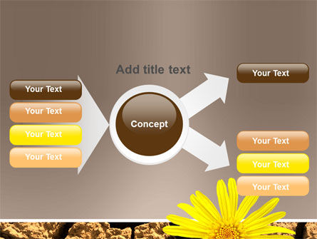 Desert Flower Free PowerPoint Template Slide 15