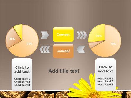 Desert Flower Free PowerPoint Template Slide 16
