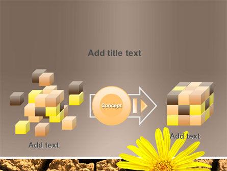 Desert Flower Free PowerPoint Template Slide 17