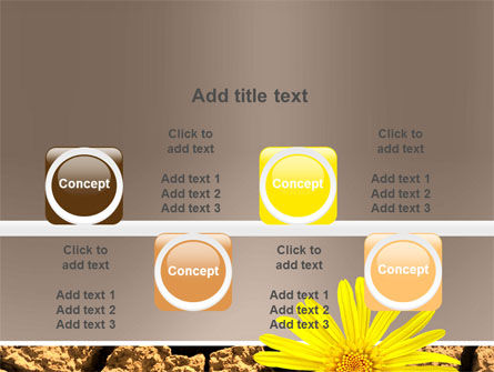 Desert Flower Free PowerPoint Template Slide 18