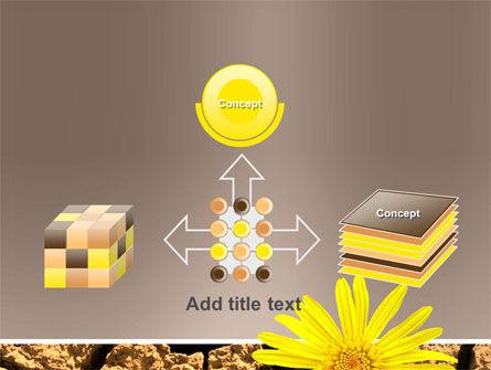 Desert Flower Free PowerPoint Template Slide 19