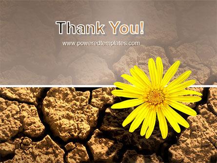 Desert Flower Free PowerPoint Template Slide 20